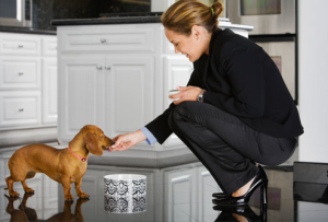 Make sure you know how to feed your dog properly!
