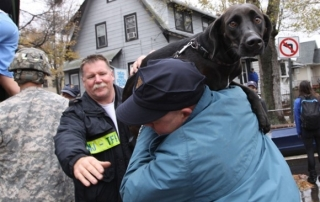 hurricane sandy black lab
