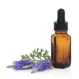 Lavender oil is a great ingredient for flea spray!